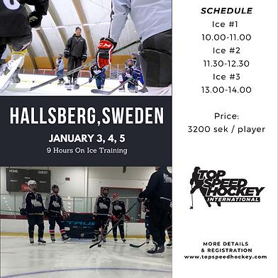 Hallsberg January.png