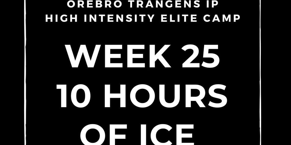 Örebro Trängens IP Week 25