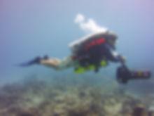 dpv diver in st. Croix