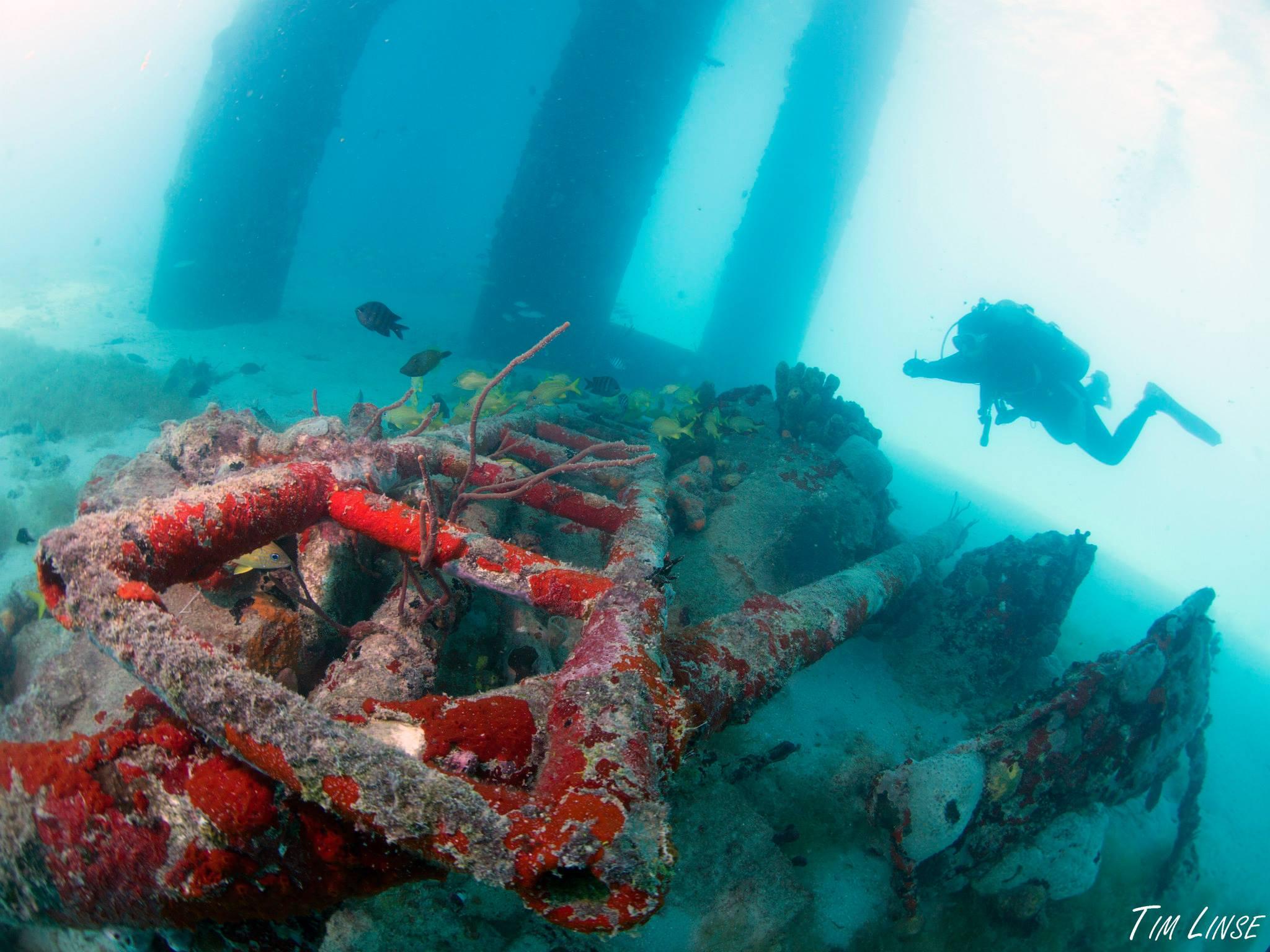 a scuba diver by the pier
