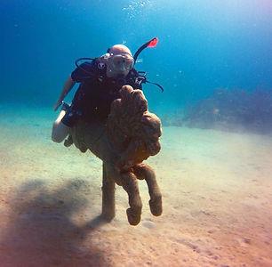 seahorse at cane bay