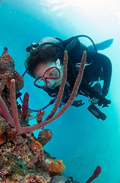 scuba diver at the frederiksted pier