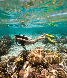scuba diver diving in shallow water