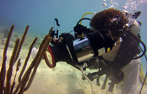 Underwater Photographer taking a class in St. Croix