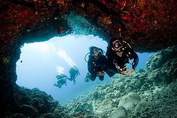 Guided Dive in St. Croix