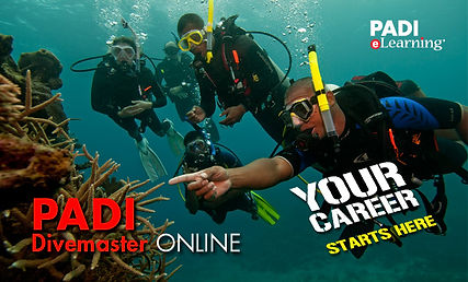 PADI Divemaster Course Students