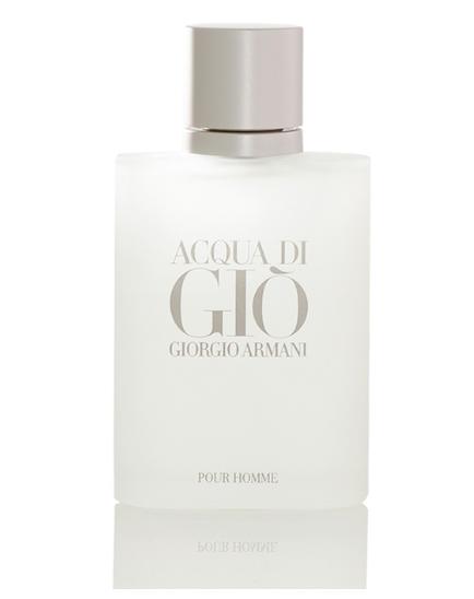 Giorgio Armani Acqua di Gio Men, 100 ml