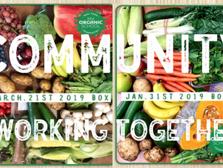 Our Vision: To make organic produce affordable for all Australian families.