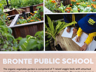 One of our Living Outdoor Classrooms won Waverley Council Mayor's Garden Sustainability award.