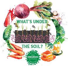 whats under the soil igpdf.jpg
