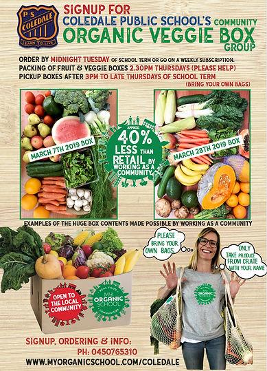 Coledale Public School Veggie box group