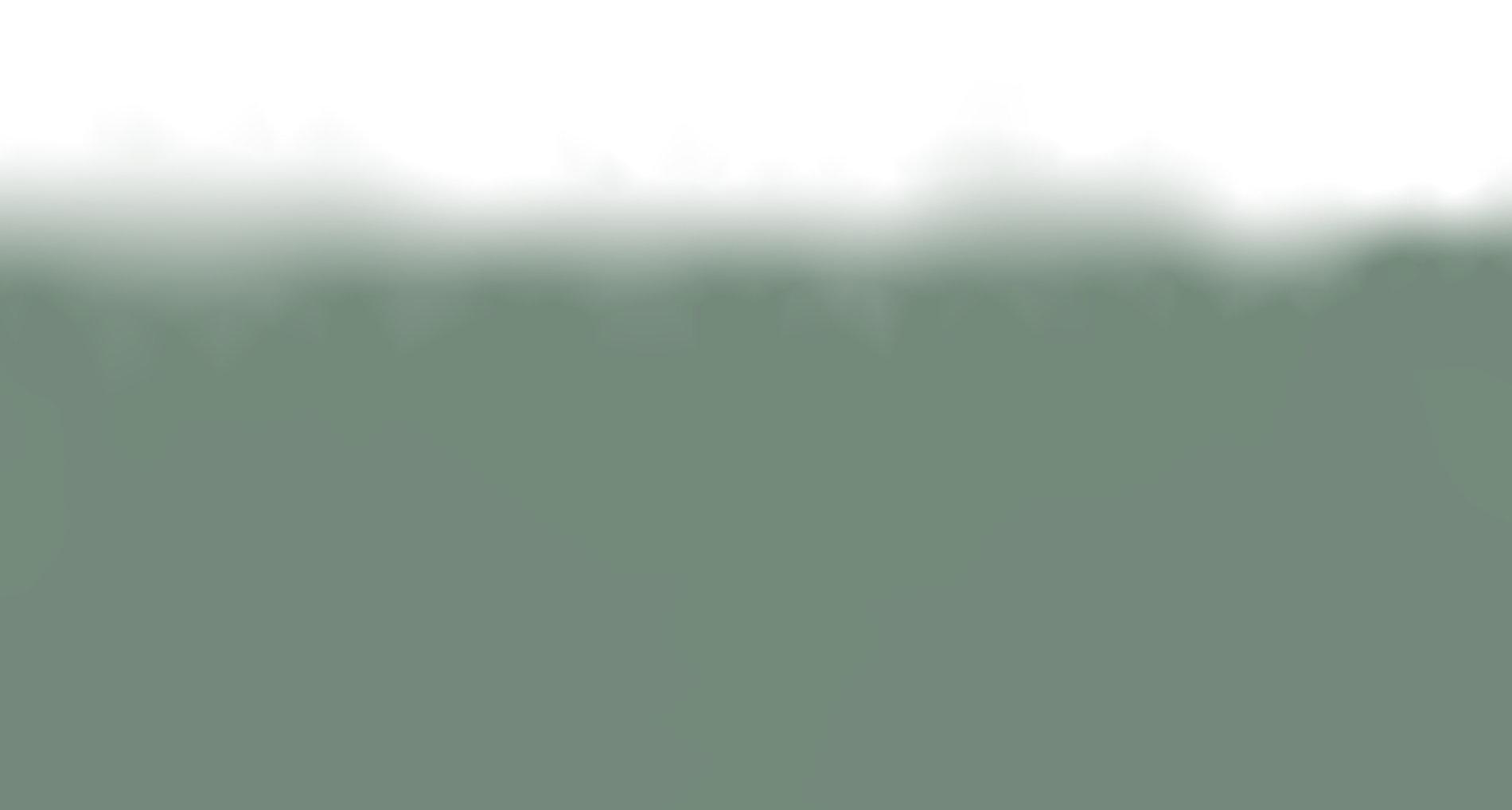 Website-Background-emgallery-5.jpg