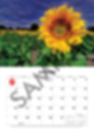 2019 Warcry A4 calendar january.jpg