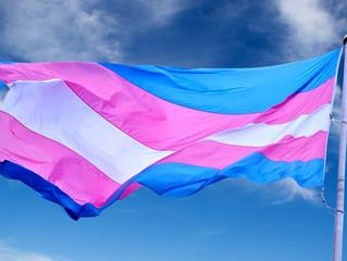 MANIFIESTO DÍA INTERNACIONAL DE LA VISIBILIDAD TRANS de ASOCIACIÓN WADO LGTBI