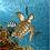 Thumbnail: Bronze Sea Turtle Sculpture Shadow Box