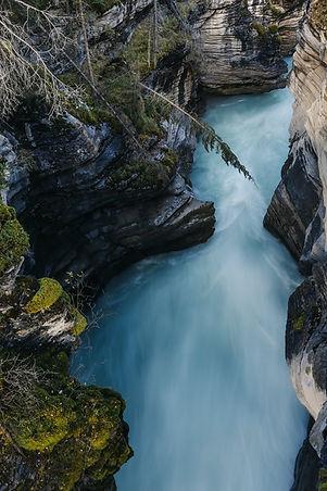 Living Streams image 3.jpeg