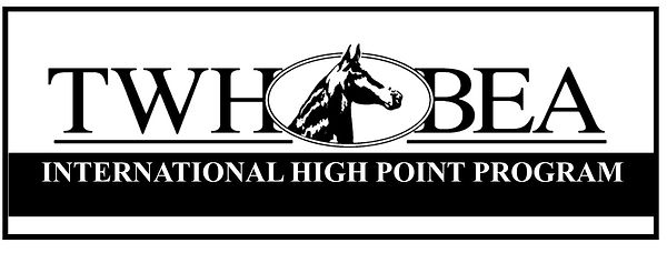 International High Point Logo.jpg