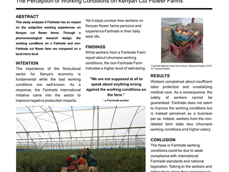 The Perception of Working Conditions on Kenyan Cut Flower Farms