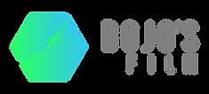 LOGO BOJO'S FILM 2020_Logo Horizontal NO