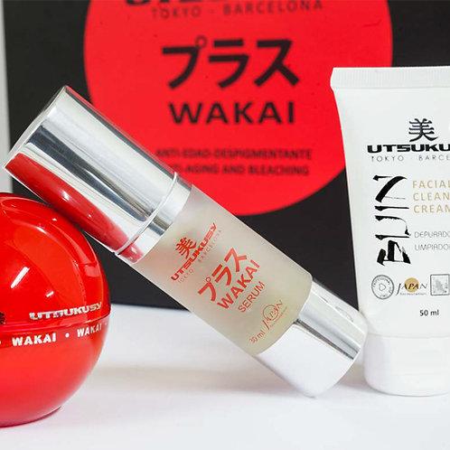 Kit Wakai – Utsukusy