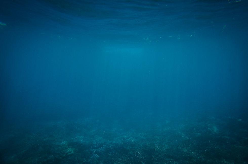 underwater-802092_1920.jpg