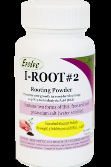 i-Root Powder (semi-hard)