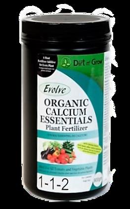 Calcium Essentials