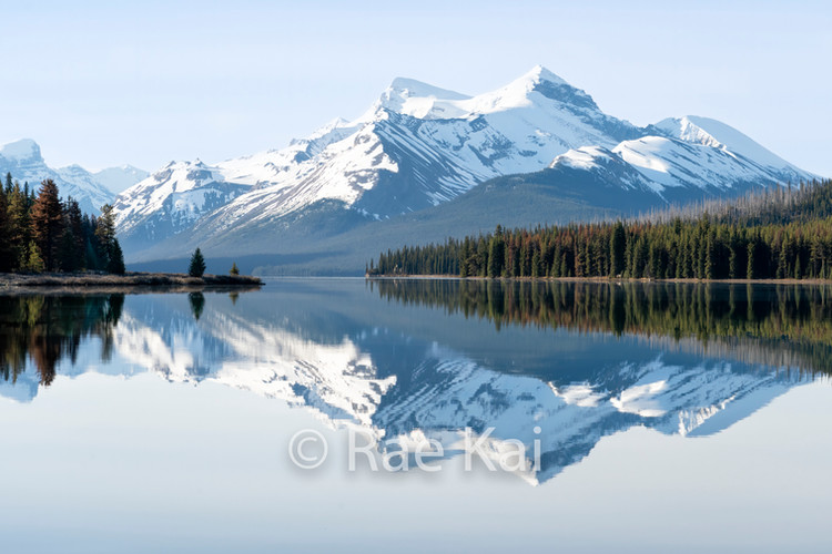 Serene Reflection.jpg