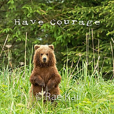 SQUARE METAL-GRIZZLY STANDING CUB.jpg