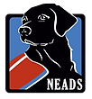 neads-1.png
