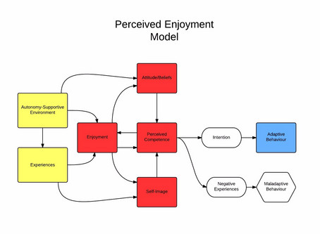 Enjoyment and its Effect on Adherence to Physical Activity