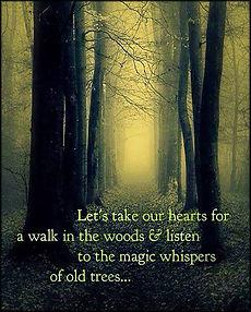 kundi woods 2 EmilysQuotes.Com-heart-wal