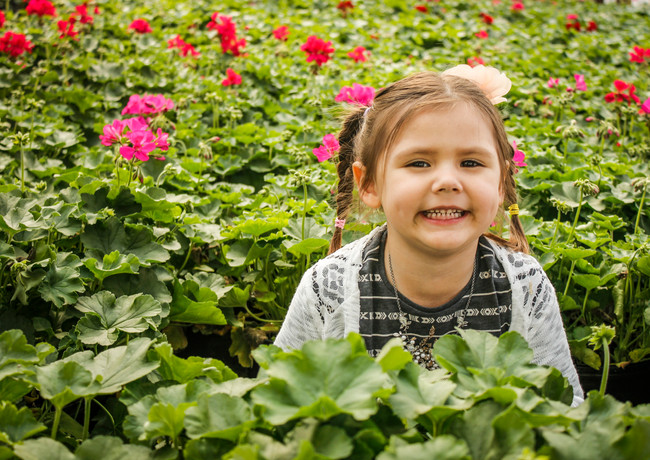 flowers kids photos photographer columbia mo missouri strawberry hill farms