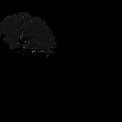 square Lifestyle Photography Logo black.