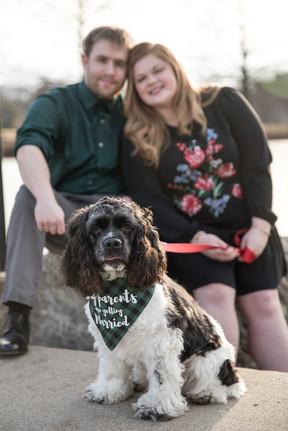 engagement photos dog family columbia missouri