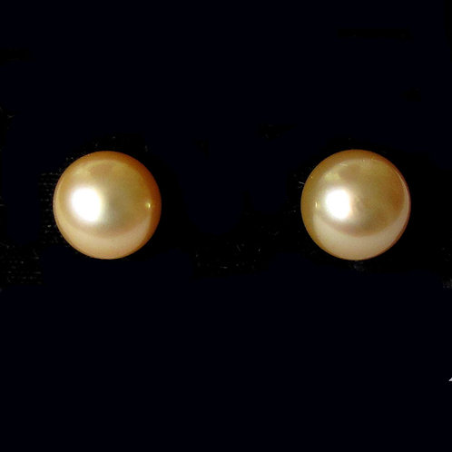 Large Golden South Sea Pearl Stud Earrings