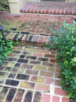 BrickPavers1 Before