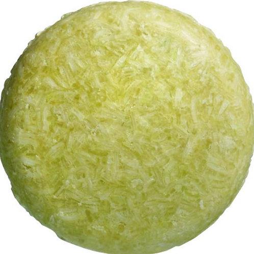 COCONUT LIME SHAMPOO BAR