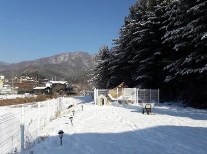겨울 케이터링 공간