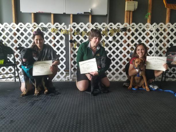 Puppy Kindergarten Graduation