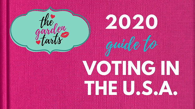 Copy of Tart Guide to Voting in the USA.