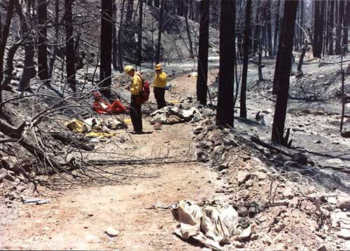 """Part 2 - Do our Wildland Fire (WF) Instructors foster """"complete"""" lessons learned in the WF culture?a"""