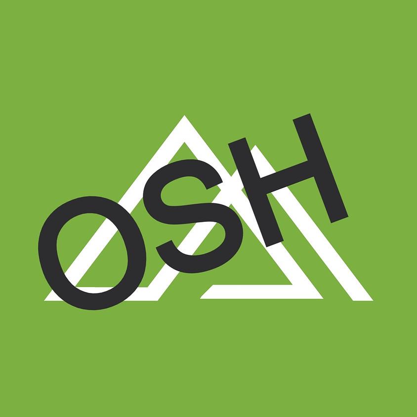 OneHour Startup Hack (OSH)