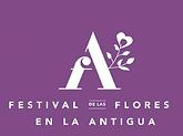 Festival flores.png