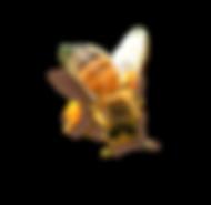 kisspng-bee-honeycomb-clip-art-bee-5a94d