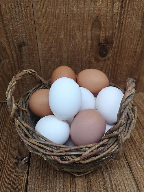 Frische Eier aus Bodenhaltung - 10 Stück