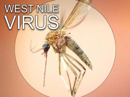 Nile Virus Warning