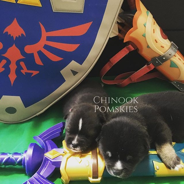 Our little protectors of Hyrule are grow