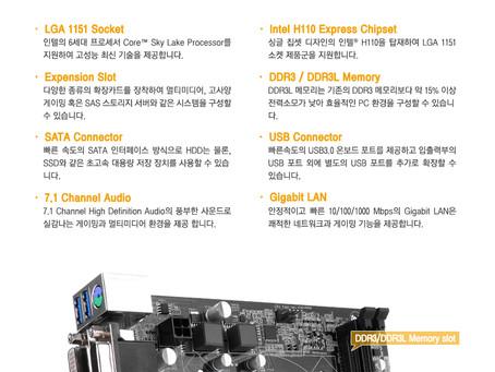 ASRock H110M DVS D3