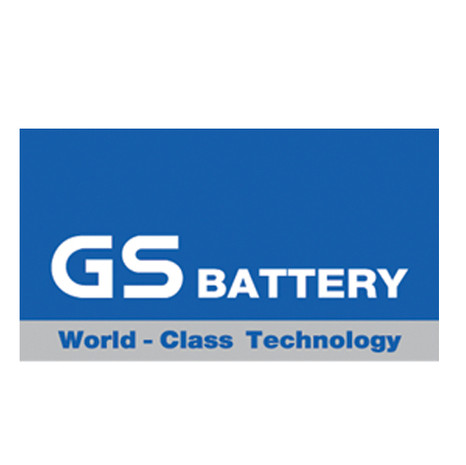 GS battery.jpg